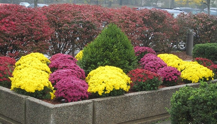 Commercial Landscaping Andover MA